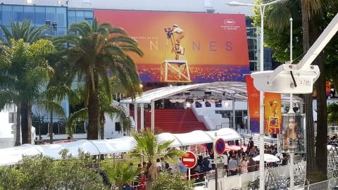 Cannes 2019, il nostro bilancio