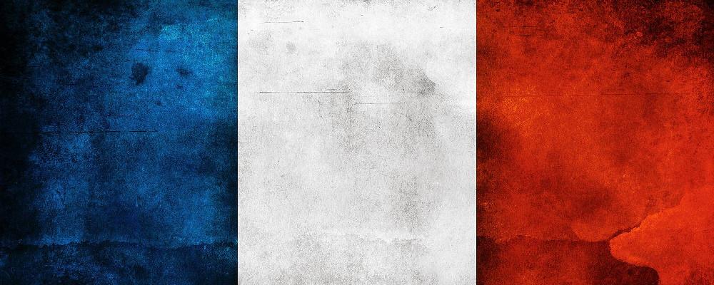 Francia per la prima volta i videogames fatturano più dei libri