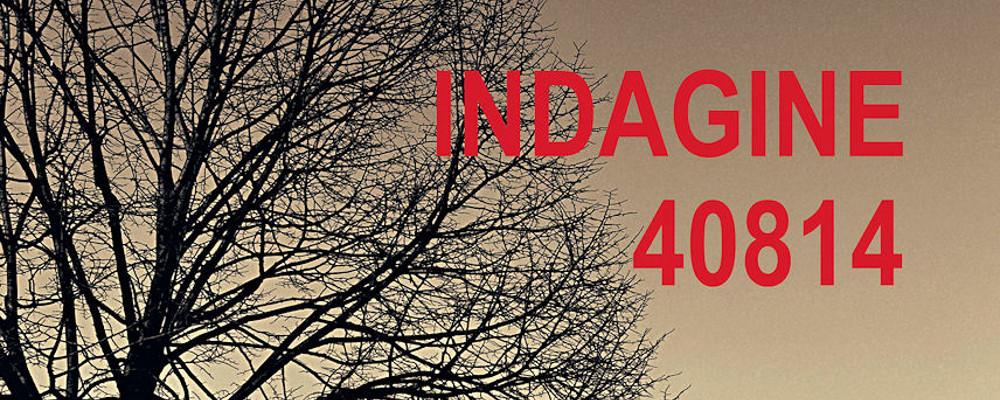 Indagine-408144