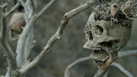 Bone Tomahawk, la recensione