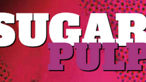 Associazione Culturale Sugarpulp: approvato il bilancio 2013 e tante novità per il 2014