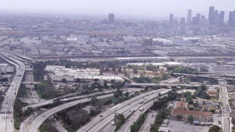 Barbabietole a L.A.