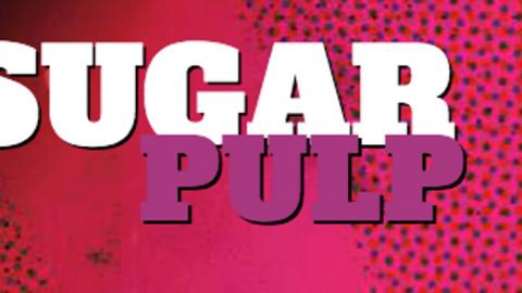 Sugarpulp e la politica
