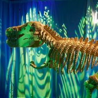 The Art of the Brick, Lego® in mostra a Milano