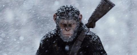 The War. Il Pianeta delle Scimmie, la recensione